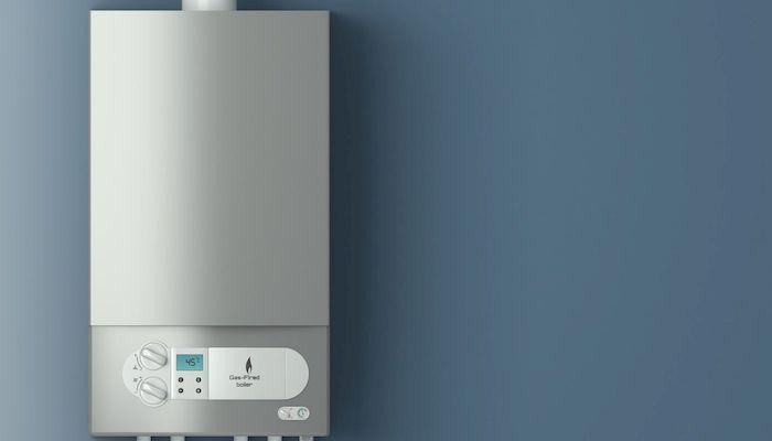 Двухконтурный газовый котел для отопления частного дома, фото